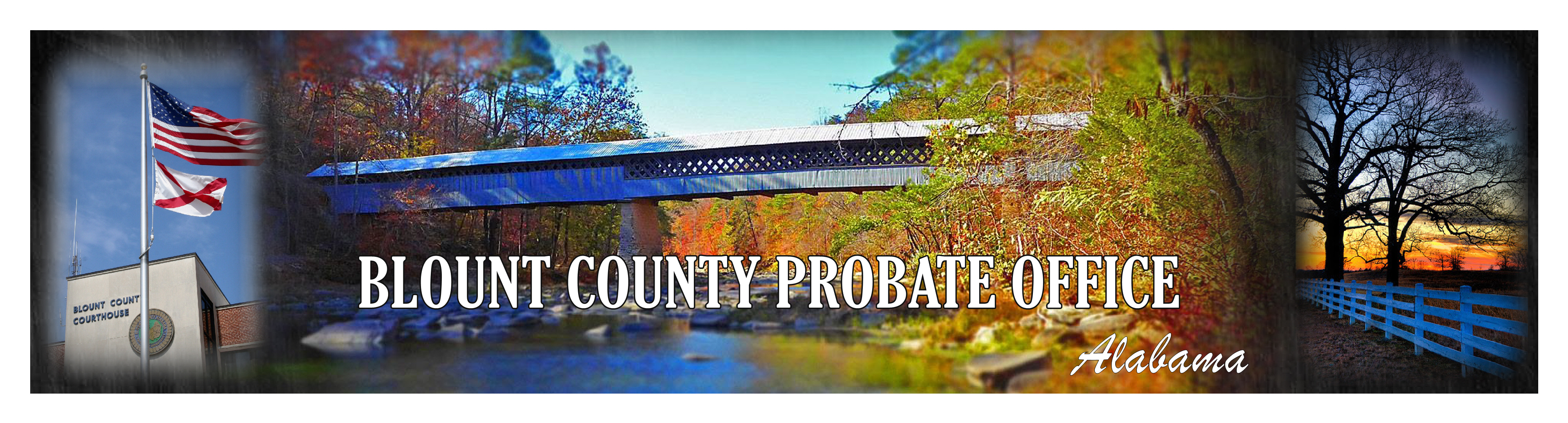 Probate Office Header